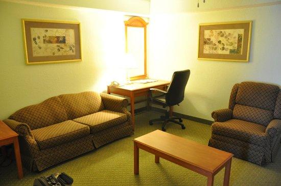 Comfort Inn & Suites Airport : Sitting Area