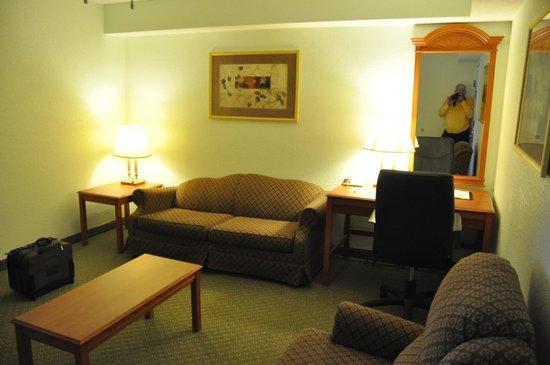 Comfort Inn & Suites Airport : Sittign area