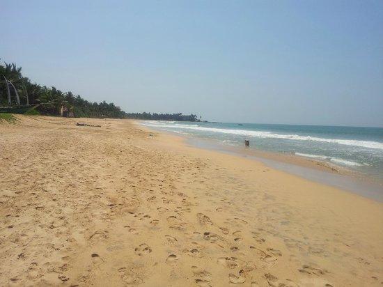 Temple Tree Resort & Spa: Stranden hotellet ligger intill. Induruwa.