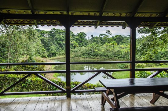 La Anita Rainforest Ranch: View from the dining pavilion