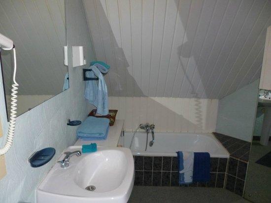 Hotel T Kasteeltje: badkamer