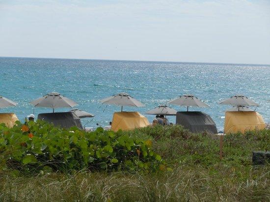 Boca Beach Club, A Waldorf Astoria Resort : Great uncluttered ocean view