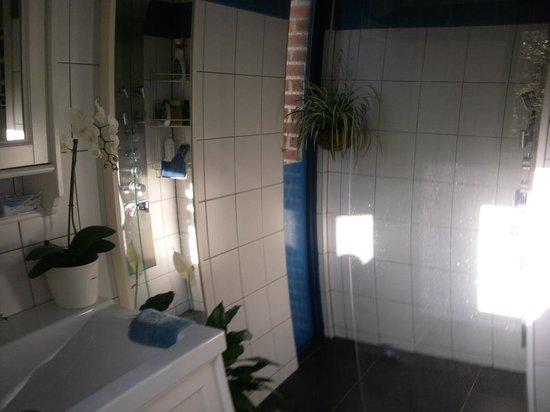 Une salle de bain avec douche ouverte ( douche italienne
