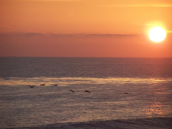 Pelican Cove Inn : Catch the beautiful sunsets here in Carlsbad