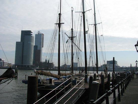 Erasmus Bridge: Вид из бухты с яхтами