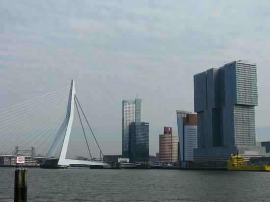 Erasmus Bridge: Мост