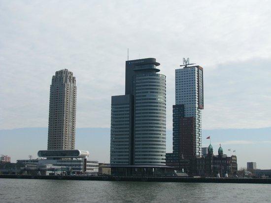 Erasmus Bridge: Небоскребы на противоположном берегу