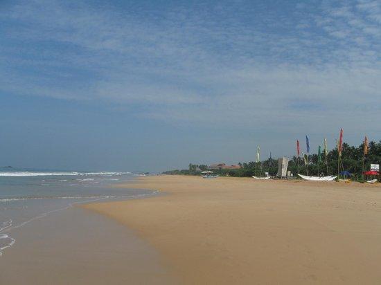 Vivanta by Taj - Bentota: The deserted beach¬