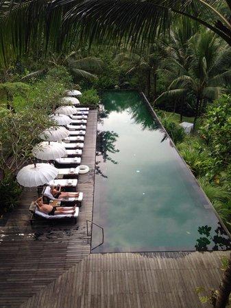 Komaneka at Rasa Sayang: 游泳池