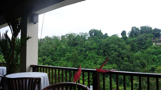 Hanging Gardens of Bali: the view from the restaurant