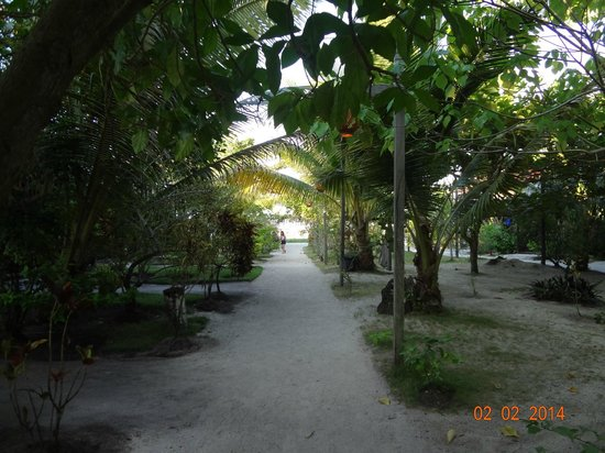 Scuba Junkie Mabul Beach Resort: The walk path from main building to the beach and peer
