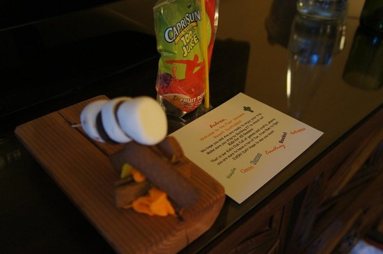 Four Seasons Resort Scottsdale at Troon North : Marshmallows over a fire treat for kids arrival