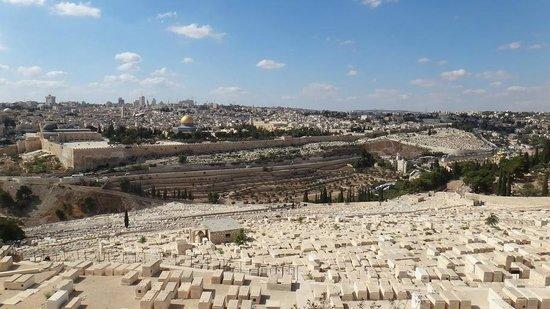 Altstadt von Jerusalem: Вид на старый город Иерусалим с Елеонской горы