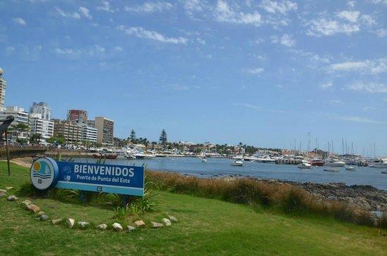 Hafen von Punta del Este: A nice view of the waterfront