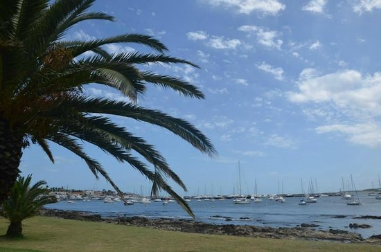 Hafen von Punta del Este: A beautiful sunny day
