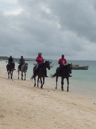 Palmar: Horse riding.