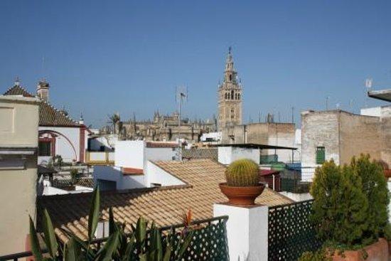 Hotel Murillo : Uitzicht op de Giralda vanaf het dakterras