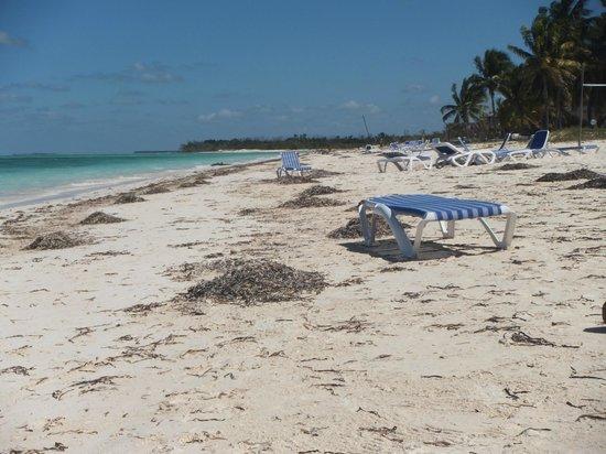 Hotel Cayo Levisa: Direkt am Strand