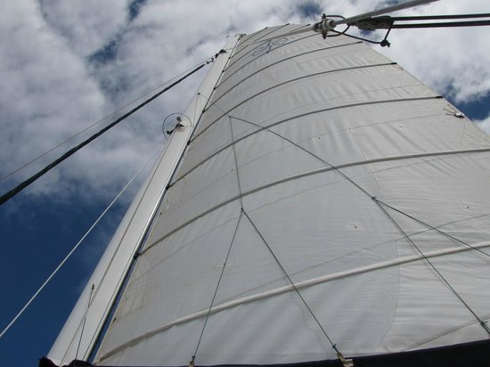 Captain Andy's Sailing Adventures: Even got to run under sail a bit