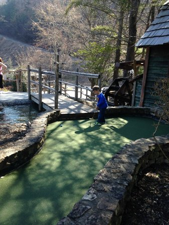 Ripley's Davy Crockett Mini Golf: nice