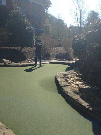 Ripley's Davy Crockett Mini Golf: nice day....