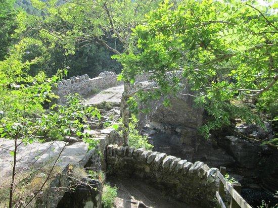 Invermoriston Falls: Invermoriston