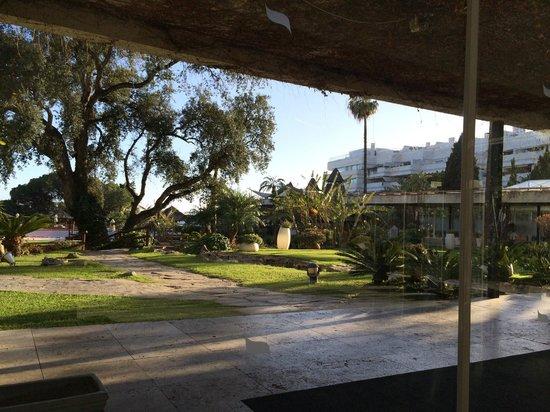 Gran Melia Don Pepe: view from breakfast restaurant