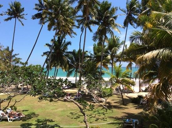 Paradise Beach Club: vue d'une des chambes deluxe