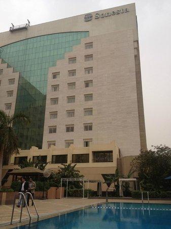 Sonesta Hotel, Tower & Casino Cairo: Hotel & pool