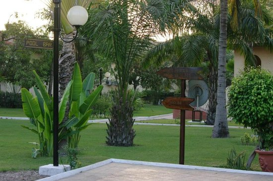 Ocean Bay Hotel & Resort: Garden