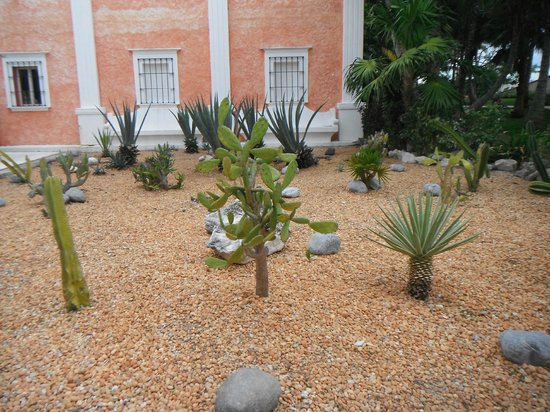 Excellence Riviera Cancun : grounds