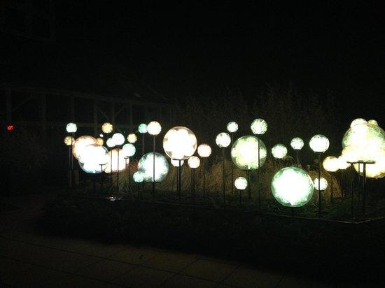 Franklin Park Conservatory and Botanical Gardens: Orbs