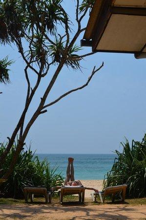 Koggala Beach Hotel: вид из номера