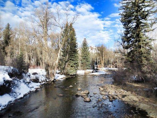 Aspen Meadows Resort : trail