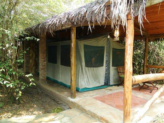 Fig Tree Camp : 3