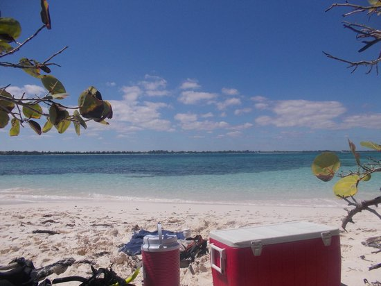 Small Hope Bay Lodge: View from Goat Key where we spent a half day