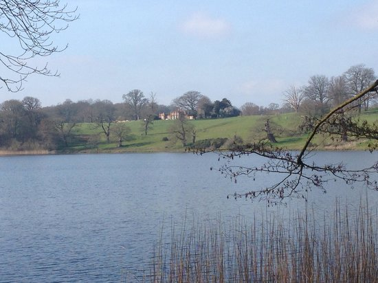 Combermere Abbey Cottages: Walk around the lake