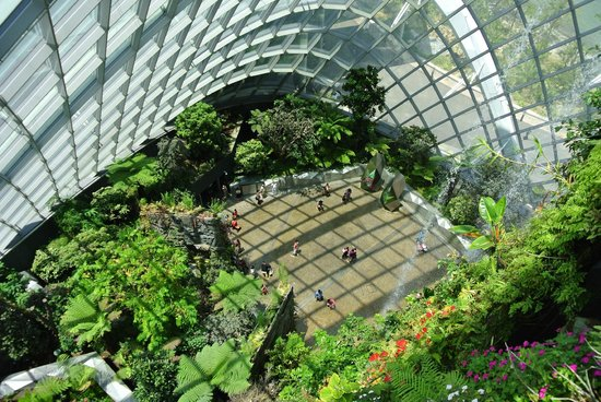 gardens by the bay cloud dome