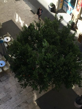 Hotel Sorolla Centro: Orange trees line the street!