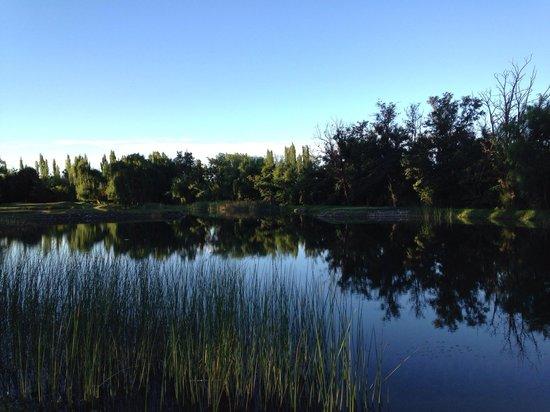 Algodon Wine Estates & Champions Club: Un lago dentro del lugar
