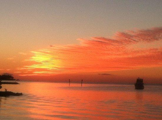 Keys Fisheries : Our sunset dinner