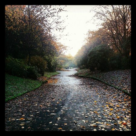 Stamford Park: Autumn
