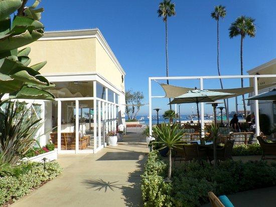 Catalina Island Pavilion Hotel Rooms