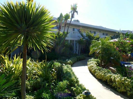 Pavilion Hotel : Hotel Grounds
