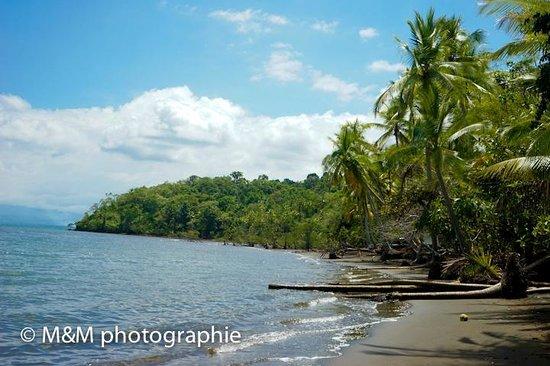 Suital Lodge: la plage privé ;)