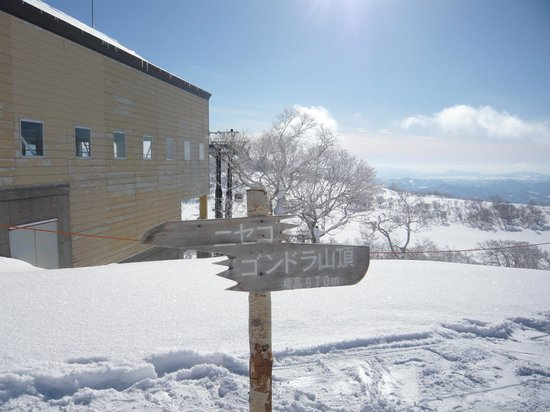 Niseko Village Ski Resort: ニセコゴンドラ山頂付近