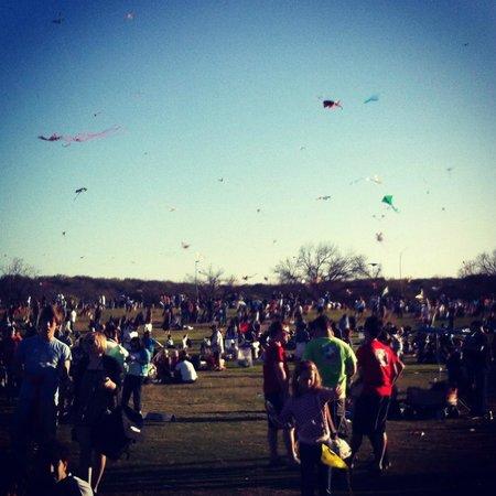 Zilker Metropolitan Park: Zilker Park Kite Festival