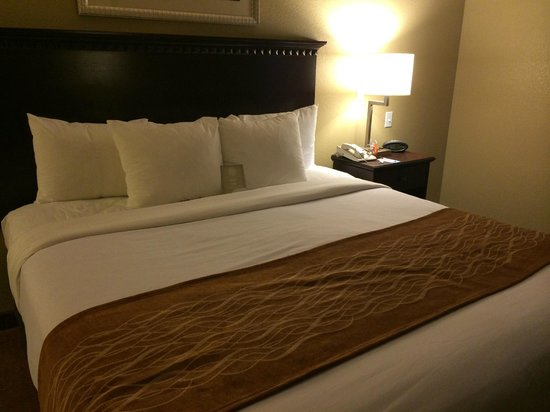 Comfort Suites Austin Airport : Great pillows & comfy bed!