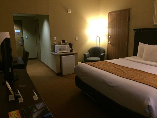 Comfort Suites Austin Airport: spacious king-bedded room