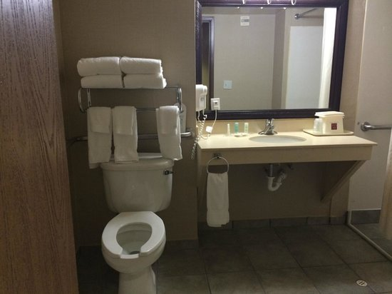 Comfort Suites Austin Airport: Bathroom in Room 127